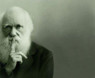 silencio darwin